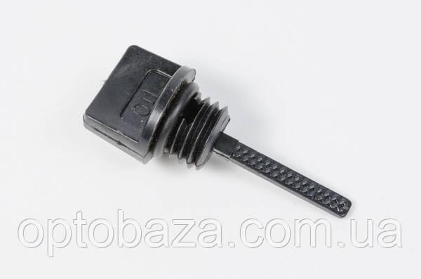 Пробка (щуп) масла для бензинового двигателей 6,5 л.с. (168f)