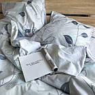 Комплект постельного белья Viluta ранфорс двухспальный 19033, фото 3
