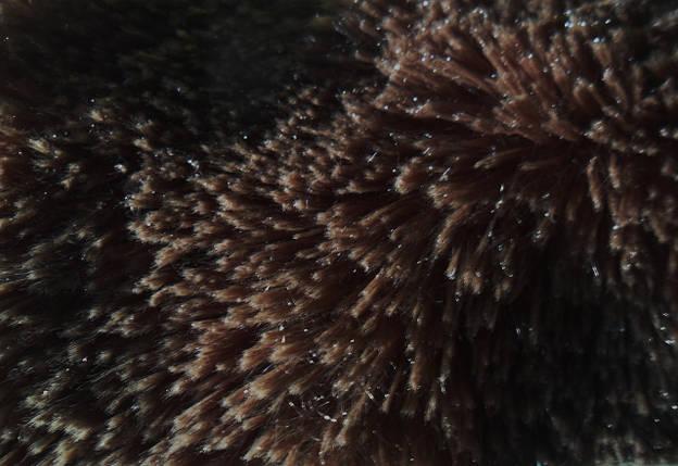 Мех искусственный игрушка, фото 2