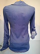 Оригінальна блуза-сорочка з довгим рукавом застібається на гудзики рукавчик підвертається, фото 3