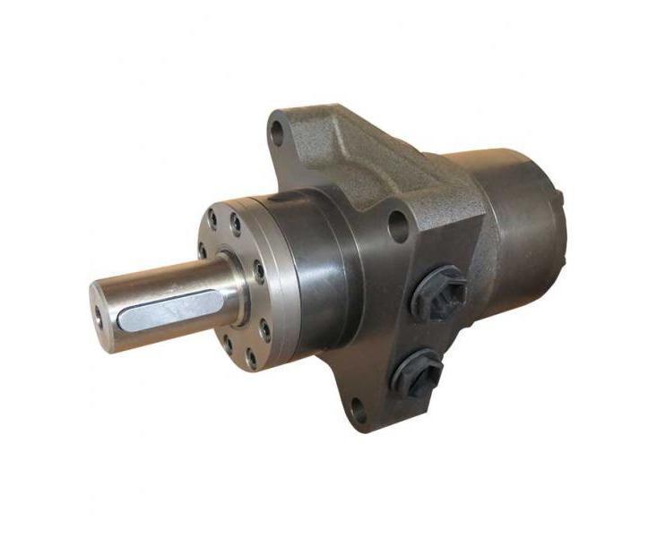 Гідромотор RW160 M+S Hydraulic