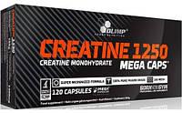 Креатин Olimp Labs Creatine Mega Caps 1250 (120 кап) (103114) Фірмовий товар!