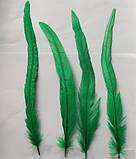 Перо петуха Натуральное Цвет Зеленый 20-30см, фото 3
