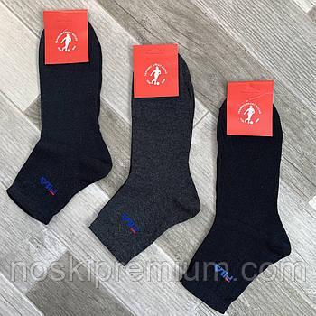 Носки мужские демисезонные хлопок без лайкры Fila, размер 40-44, ассорти, средние, 04570