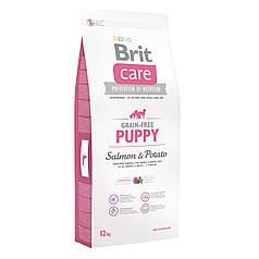 Корм Brit  Care GF Puppy Salmon & Potato  для щенков малых и средних пород Порез 2 см