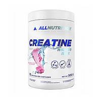 Креатин AllNutrition Creatine Muscle Max, 500 грамм Жвачка
