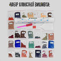 TWD60001 Набір алмазної вишивки Релігія-1, фото 2