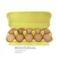 Яйца куриные домашние СвитБио 10 шт.