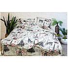 Комплект постельного белья Viluta ранфорс двуспальный 12599, фото 2