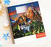 Тетрадь школьная в клеточку 96 листов Лидер, удивительная природа, фото 2