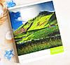 Тетрадь школьная в клеточку 96 листов Лидер, удивительная природа, фото 5