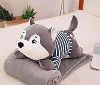 Плюшева іграшка-подушка хаскі з пледом всередині 3 в 1 krd0174