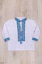 Вышиванка для мальчика с длинным рукавом рост 98-116 (3-6 лет) 2 цвета