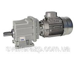 CMG012F12019.8371B14 0.25kW4p циліндричний мотор-редуктор i=19.83