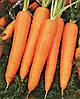 Семена моркови Камаран F1 1 млн. семян Bejo