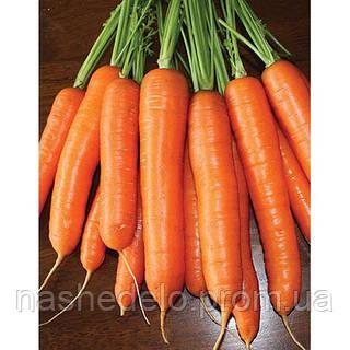 Семена моркови Кантербьюри F1 1 млн. семян Bejo