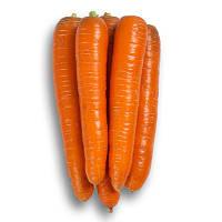 Морелия Ф1 25 000 (калибр. < 1,6) сем. морковь РЦ