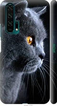 "Чохол на Honor 20 Pro Красивий кіт ""3038c-1702-2448"""