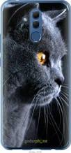 "Чехол на Huawei Mate 20 Lite Красивый кот ""3038u-1575-2448"""