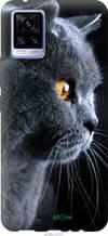 "Чохол на Vivo V20 Красивий кіт ""3038u-2127-2448"""