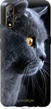 "Чохол на Vivo V17 Neo Красивий кіт ""3038u-1764-2448"""