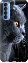 """Чехол на Oppo Reno 4 Pro Красивый кот """"3038u-2024-2448"""""""