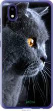 "Чехол на ZTE Blade A3 2020 Красивый кот ""3038u-2112-2448"""