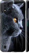 "Чохол на Samsung Galaxy A01 A015F Красивий кіт ""3038c-1842-2448"""