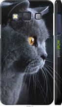 "Чохол на Samsung Galaxy A3 A300H Красивий кіт ""3038c-72-2448"""