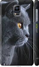 "Чохол на Samsung Galaxy Note 4 N910H Красивий кіт ""3038c-64-2448"""