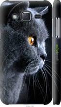 """Чохол на Samsung Galaxy J2 J200H Красивий кіт """"3038c-190-2448"""""""