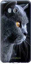 """Чохол HTC U11 Красивий кіт """"3038u-1007-2448"""""""