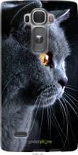 """Чехол на LG G Flex2 Красивый кот """"3038u-287-2448"""""""