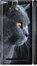 "Чехол на Sony Xperia T2 Ultra Dual D5322 Красивый кот ""3038c-92-2448"""