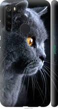 """Чохол на Redmi Note 8 Красивий кіт """"3038c-1787-2448"""""""