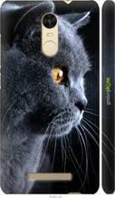 "Чохол на Xiaomi Redmi Note 3 pro Красивий кіт ""3038c-335-2448"""
