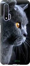 """Чохол на Huawei Nova 6 Красивий кіт """"3038u-1821-2448"""""""