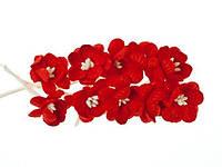 Цветы вишни красные 10 шт. ScrapBerry's