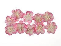 Цветы вишни бело-розовые 10 шт. ScrapBerry's, фото 1