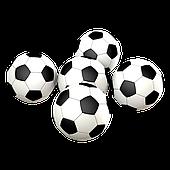 Футбольні м'ячі