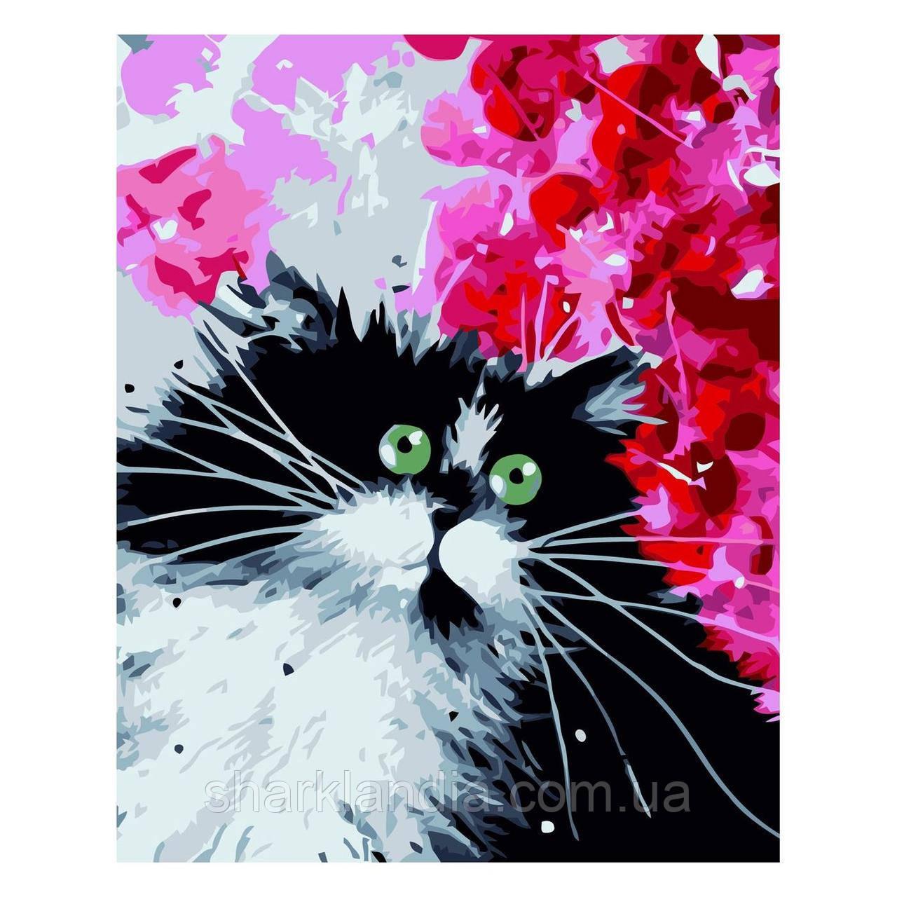 Картина за номерами Чорно-білий котик 30х40 см Strateg Розмальовки