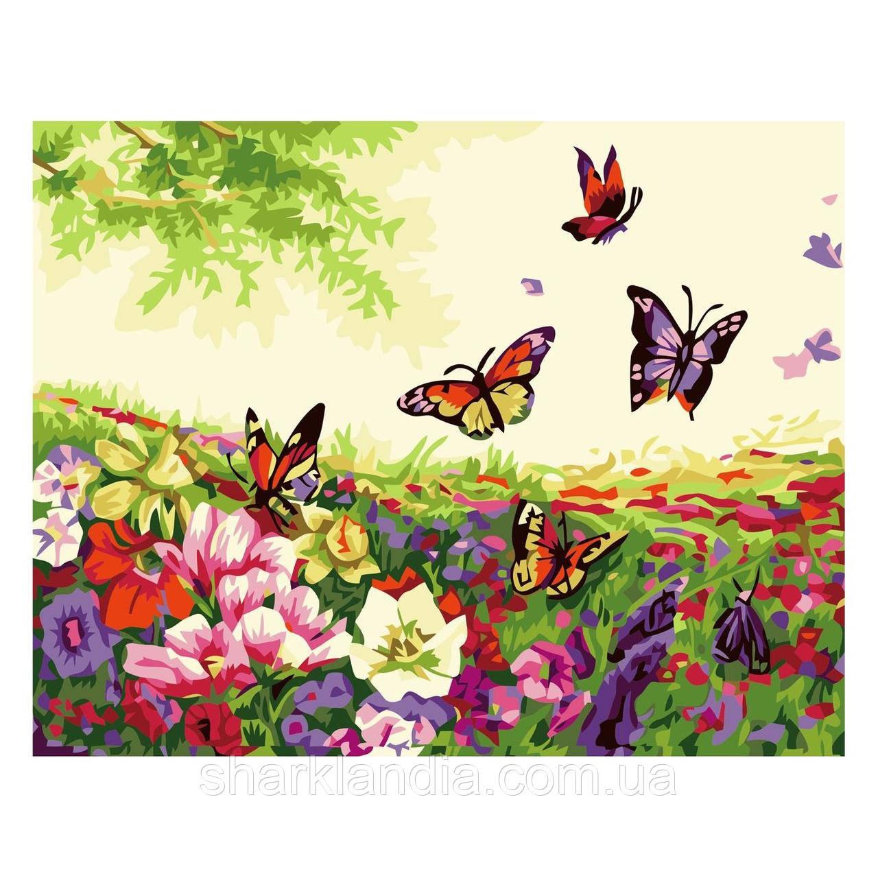 Картина за номерами Метелики в поле квітів 30х40 см Strateg Розмальовки