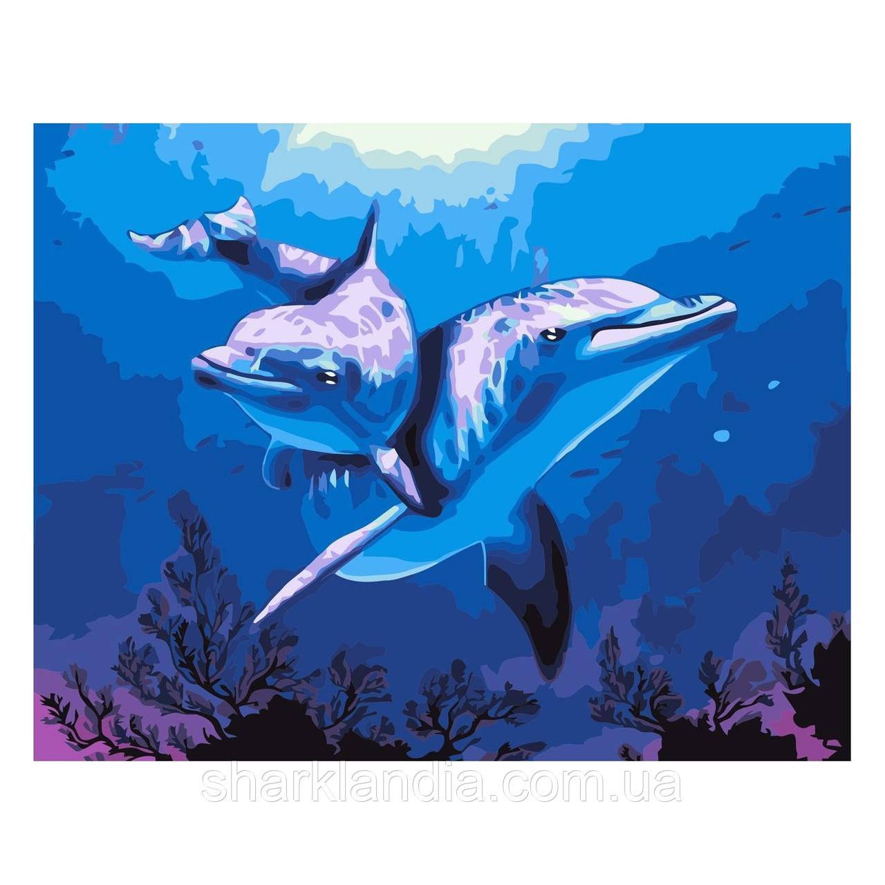 Картина за номерами Дельфіни 30х40 см Strateg Розмальовки
