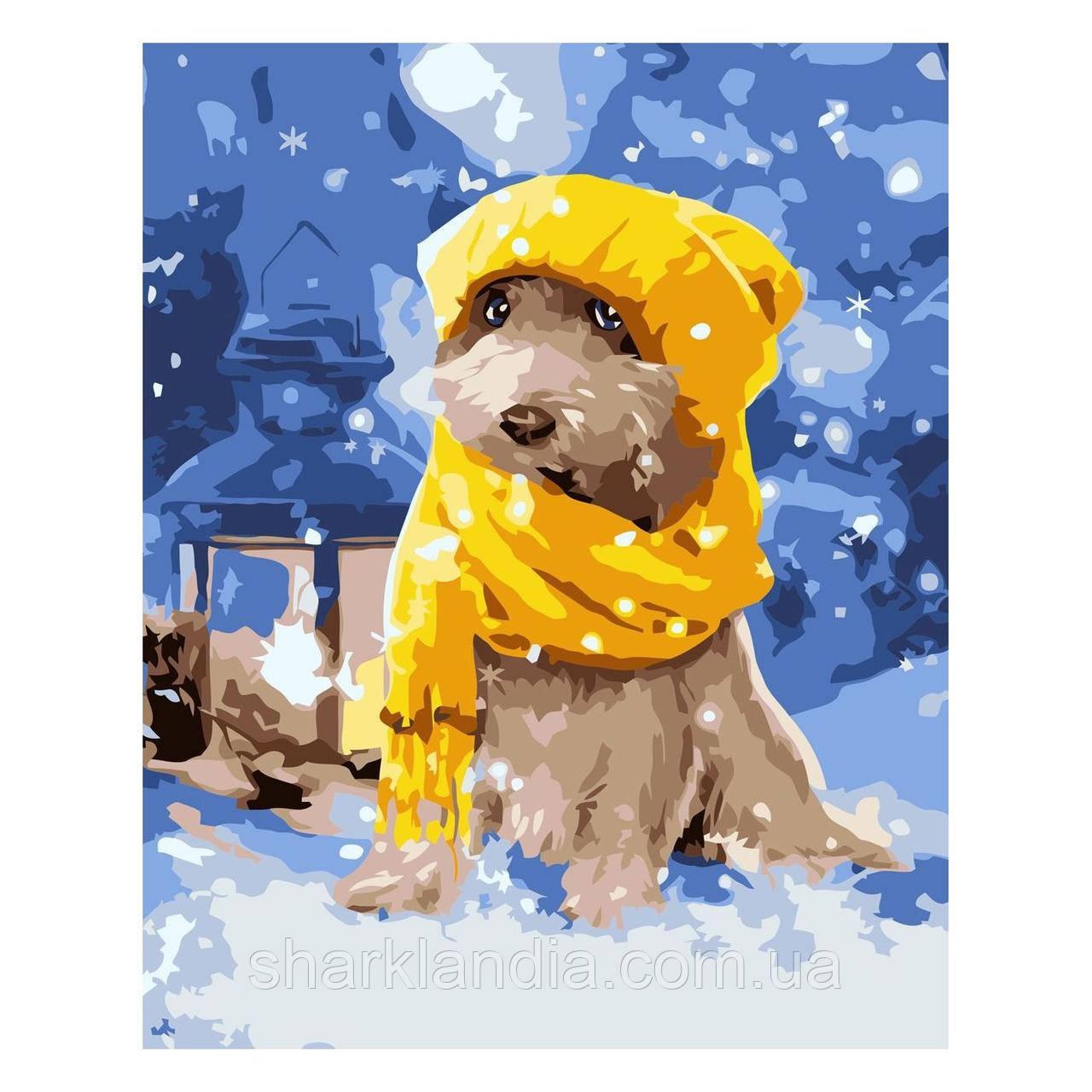 Картина за номерами Собачка в жовтій шапочці 30х40 см Strateg Розмальовки