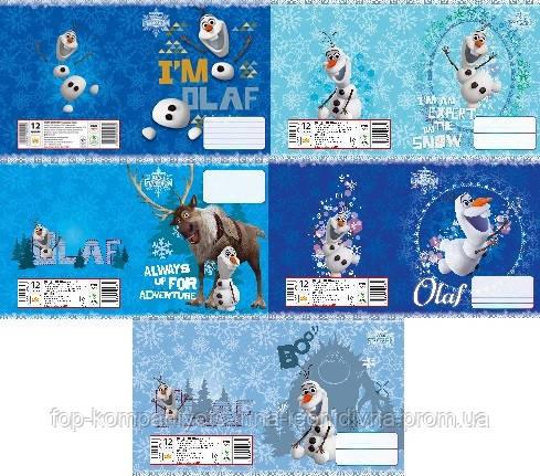 Набір учнівських зошитів 18 аркушів ТЕТРАДА DISNEY Frozen Олаф лінія картонна обкладинка 5 дизайнів 20 шт