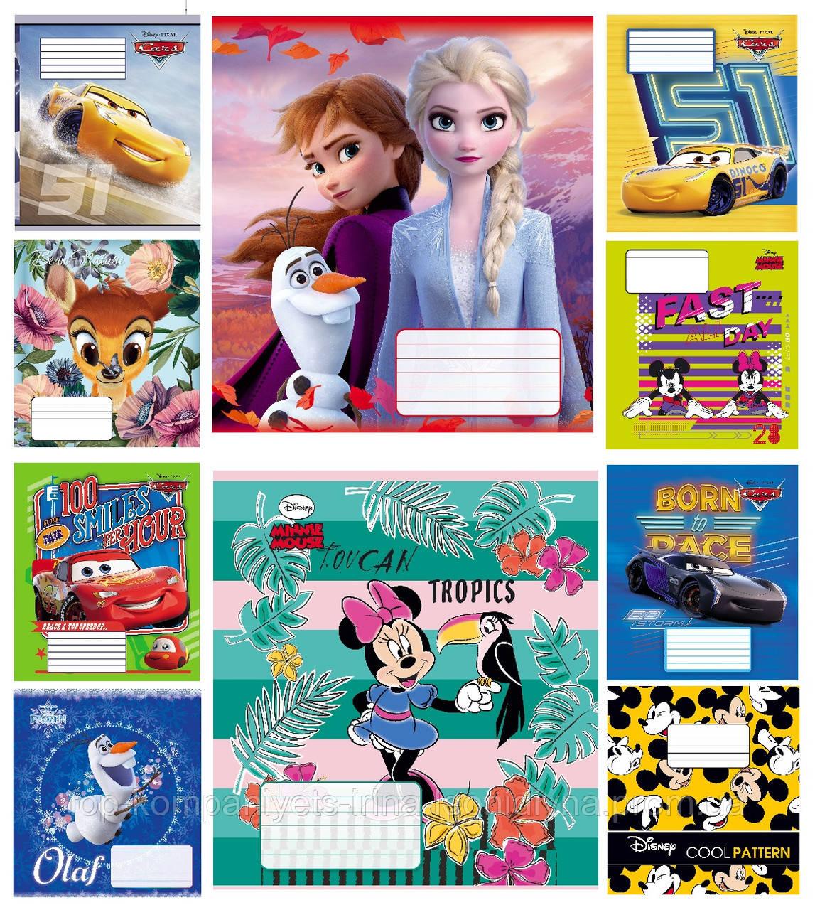 Набір учнівських зошитів 18 аркушів ТЕТРАДА DISNEY Мікс клітина картонна обкладинка 10 дизайнів 20 шт (ТЕ12394)
