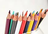 Набор цветных карандашей MARCO Colorite в металлическом пенале 12 цветов (1100-12TN), фото 2