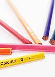 Набор цветных карандашей MARCO Colorite в металлическом пенале 12 цветов (1100-12TN), фото 3