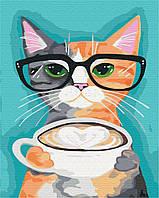 Кіт і кави