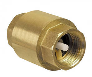 """Обратный клапан 2 1/2"""" с пластиковым штоком"""